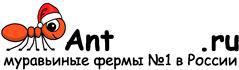 Муравьиные фермы AntFarms.ru - Сургут